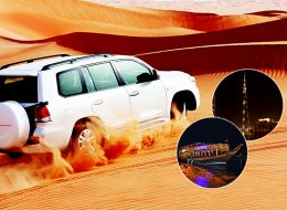 Dubai City Tour + Desert Safari + Dhow Cruise Dinner